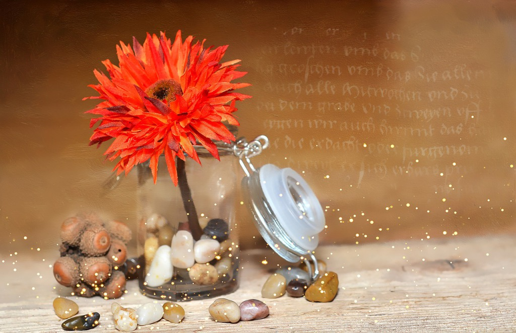 flower-689344_1280