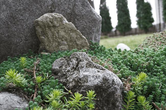 Tento obrázek nemá vyplněný atribut alt; název souboru je skalka-kameny-1-4.png.