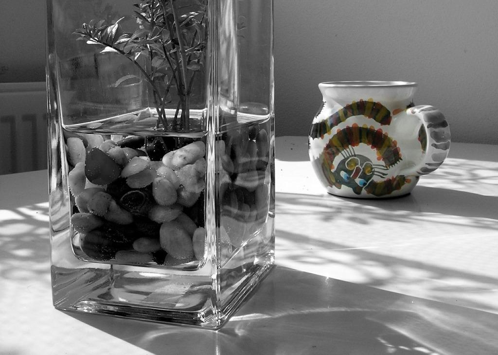 vase-364275_1280