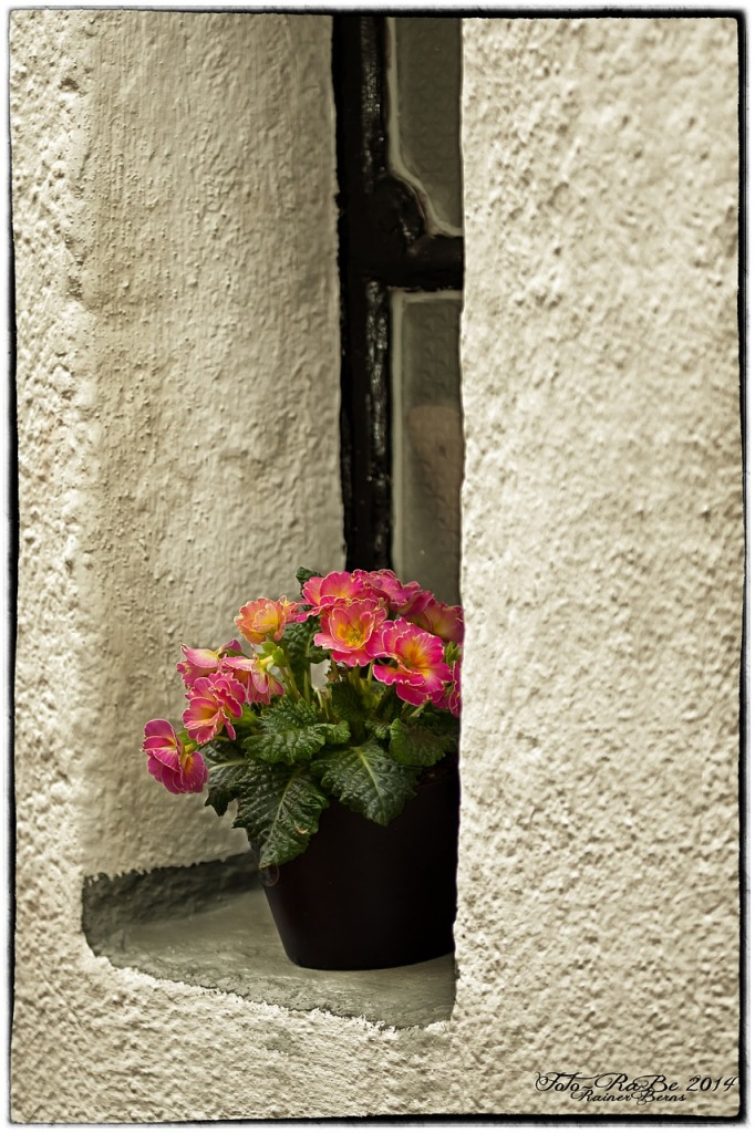 window-611629_1280